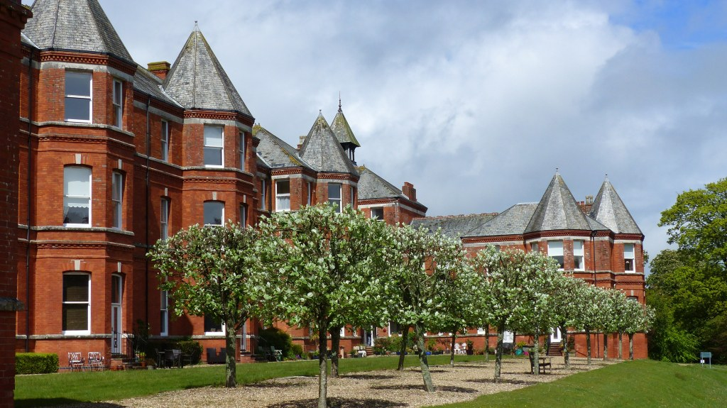 Rows of pruned Whitebeam beside red brick Victorian building