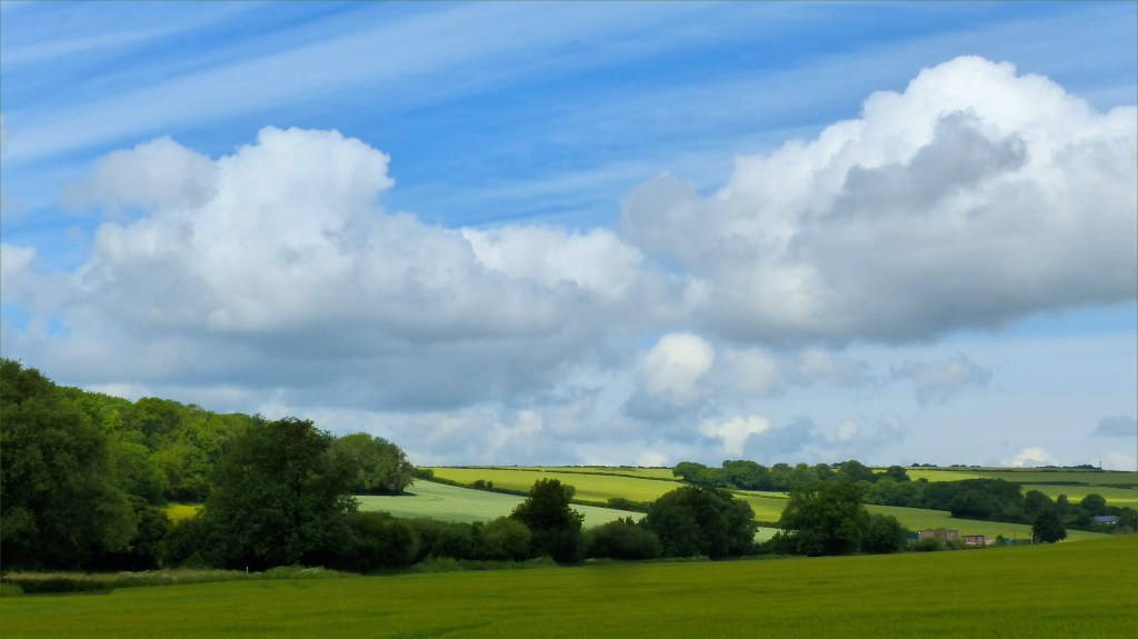 Trees, fields, blue sky, and clouds in the River Cerne valley