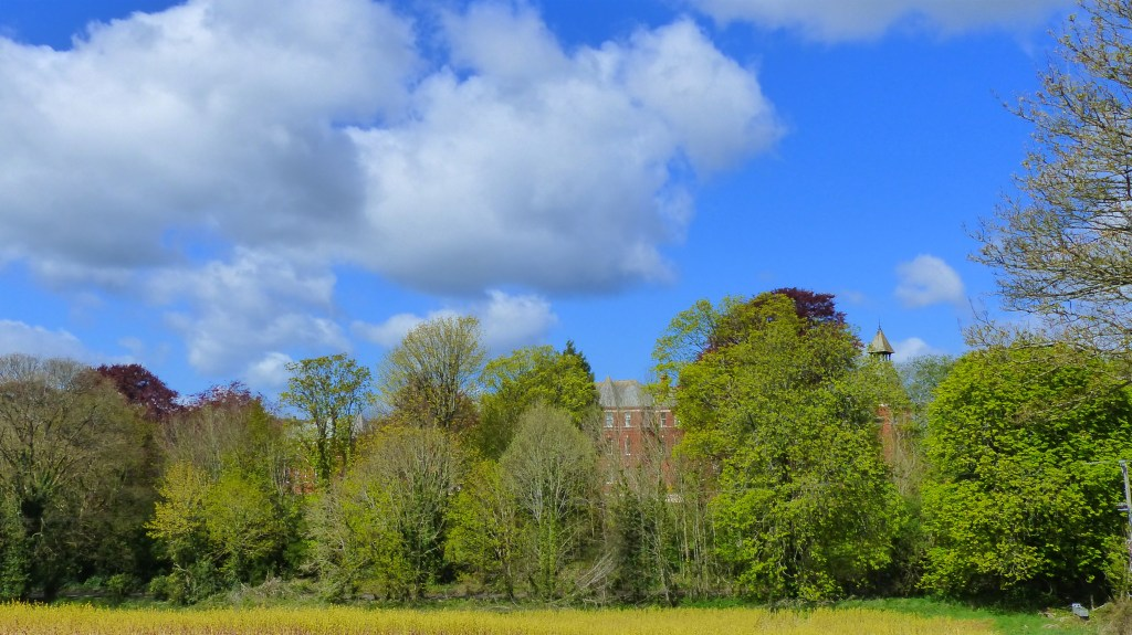 Red brick building behind trees with blue sky and clouds