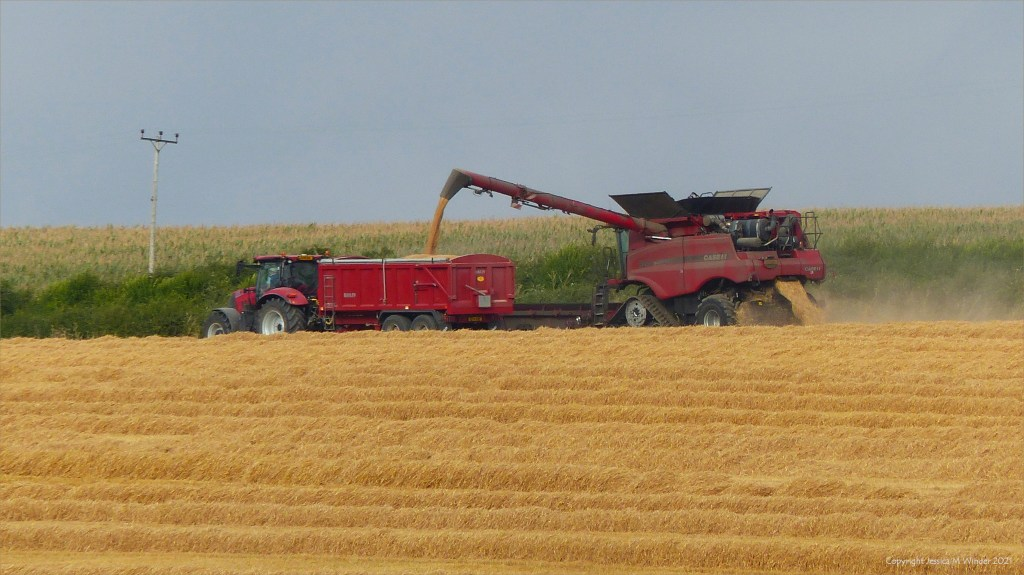 Farm machinery gathering in the barley harvest