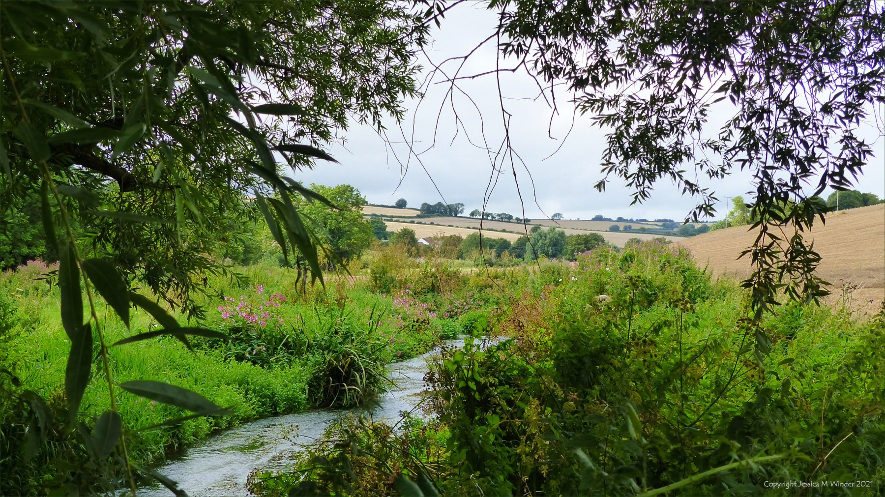 Countryside view with river and fields at Cerne Valley